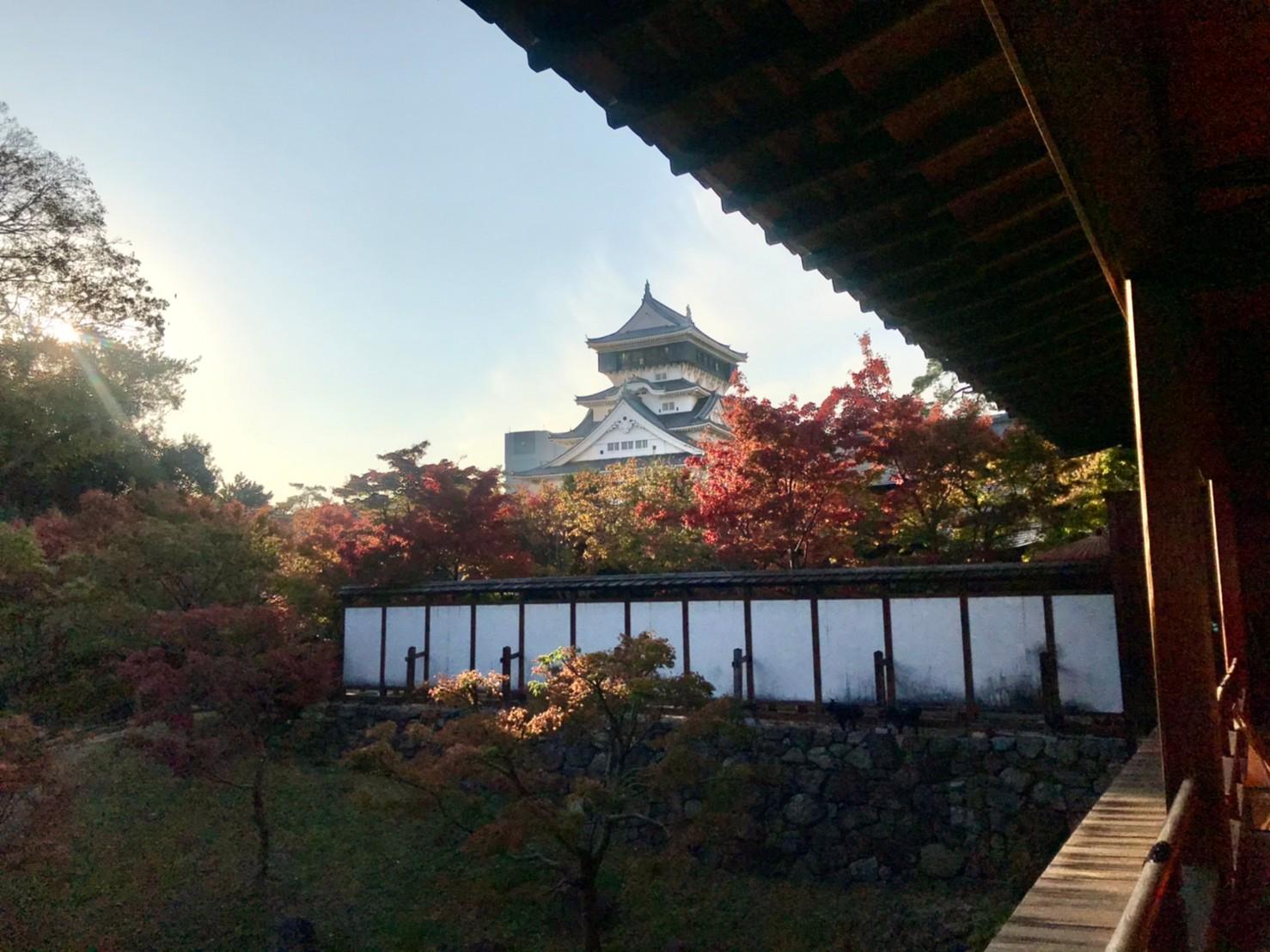 小倉城庭園で紅葉狩り